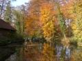 Herbststimmung am Mühlenteich